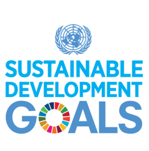 Logo des Sustainable Development Goals Summit